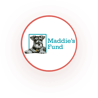 Maddies Fund - Proud Sponsor of Paws of Lee County